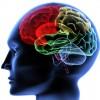 Día mundial del daño cerebral adquirido