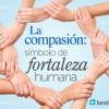La falsa compasión