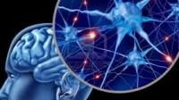 Dilemas éticos de las neurociencias