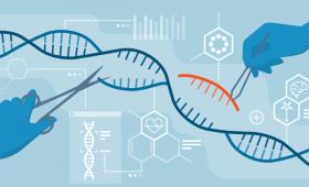 El CRISPR fracasa en embriones humanos