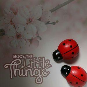 disfruta-de-las-cosas-pequenas